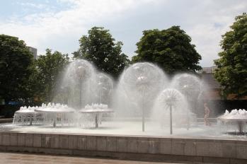 1969 nach Entwürfen von Leonie Wirth und Karl Bergmann gebaut, stand dieses Wasserspiel bis 2004 auf der Prager Straße in der Altstadt. Nur drei kleine Blüten kehrten zurück, der komplette Brunnen fand eine neue Heimat und ging 2009 auf dem Albert-Wolf-Platz wieder in Betrieb.