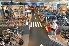 Große Auswahl an Fahrrädern