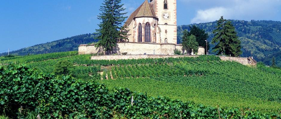 Das Elsass lockt mit einer atemberaubenden Natur. Foto: Servicereisen Gießen