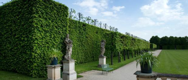 Blick auf den Barockgarten Großsedlitz. Foto: Arno Burgi/Archiv