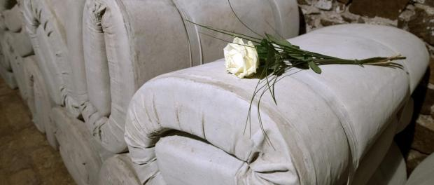 Rose auf der Installation des Künstlers Thomas Moecker im Schloss Colditz. Foto: Hendrik Schmidt