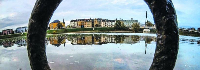 Blick vom alten Fähranleger im Ostragehege zum Pieschener Winkel – hier etwa braucht Dresden künftig wieder eine Verbindung über den Fluss. Foto: André Wirsig
